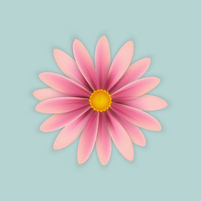 Create Simple Flowers With Gradient Mesh in Adobe Illustrator — Tuts