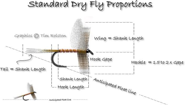 1000  images about fly proportion