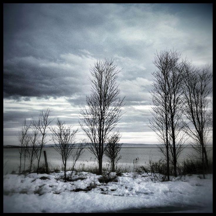 #MonCharlevoix #charlevoix #baiestpaul #stlawrenceriver #quebec #canada #landscape #landscape_lovers #landscapephotography #tree #tree_captures #sky #winter #christmasday #wanderer #travel #traveltheworld #snow #picoftheday by fleurdelotux