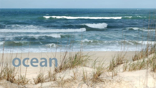 Ocean ~ a slate grey blue, that of a winter beach side waveBeach Camps, State Parks, States Parks, Family Camping, Families Camps, Beach Camping, Winter Beach, Camps Getaways, Beach 333