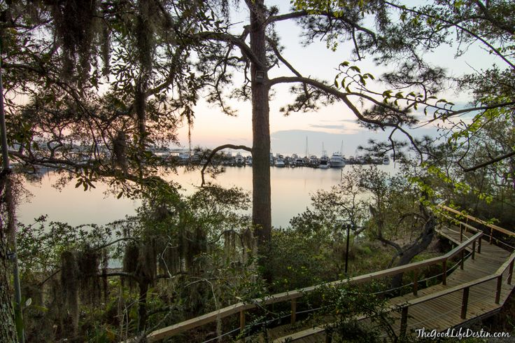 View from a treehouse on the walk from The Village of Baytowne Wharf to Marina Bar and Grill