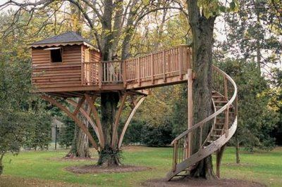 Tree House for BenSpirals Staircases, House Ideas, Trees Forts, Buildings A House, Tree Houses, Awesome Trees House, Treehouse, Future Kids, Backyards