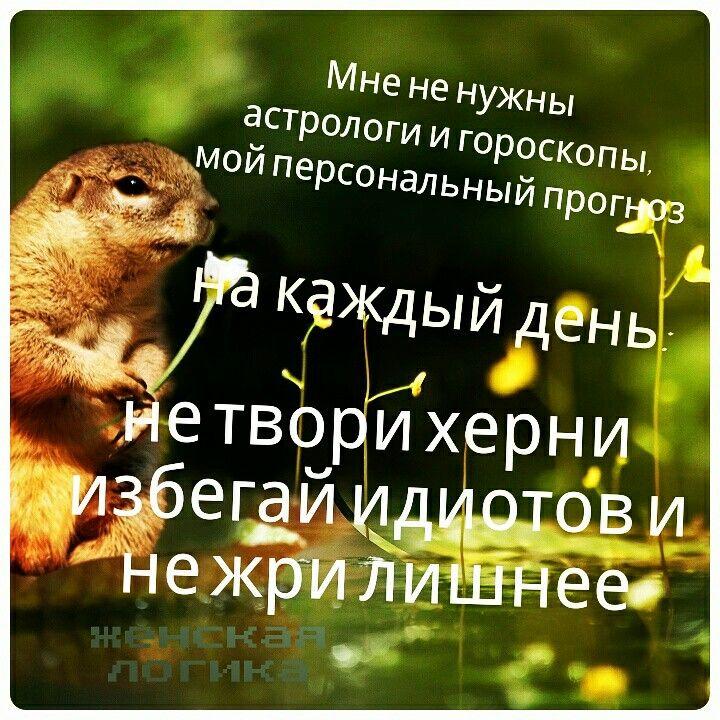 #весна #позитив #скоролето