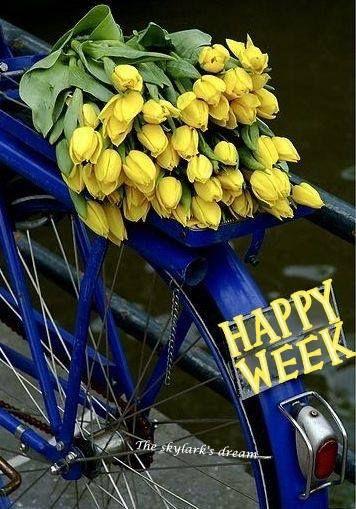 Have a wonderful week! ❤️
