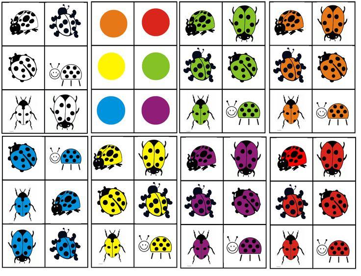 matrix lieveheersbeestje kleur combineren met soort lieveheersbeestje