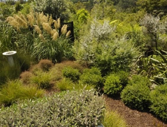 114 best images about New Zealand Designed Gardens on ...