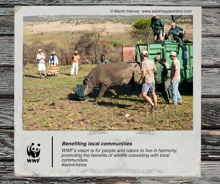 WWF's vision is for people and nature to live in harmony, promoting the benefits of wildlife coexisting with local communities. #iam4rhinos