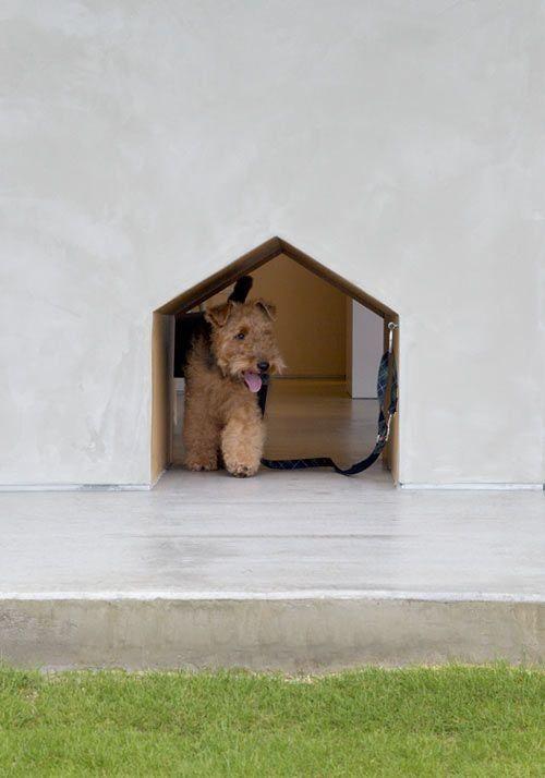 A Nice Modern Take On The Doggy Door!