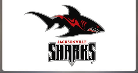 Jacksonville Sharks    The Jacksonville Sports Group launched a new team (Jacksonville Sharks) for the newly developed Arena Football League, founded in 2009 to replace the defunct Arena Football League. The league was formed with 16 teams: existing teams from the AFL and arena football along with two teams from the American Indoor Football Association, and several new teams or markets.