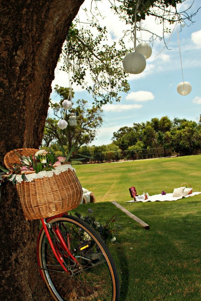 Old Broadwater Farm  Busselton  WA  ceremony & reception  www.capeoflove.com
