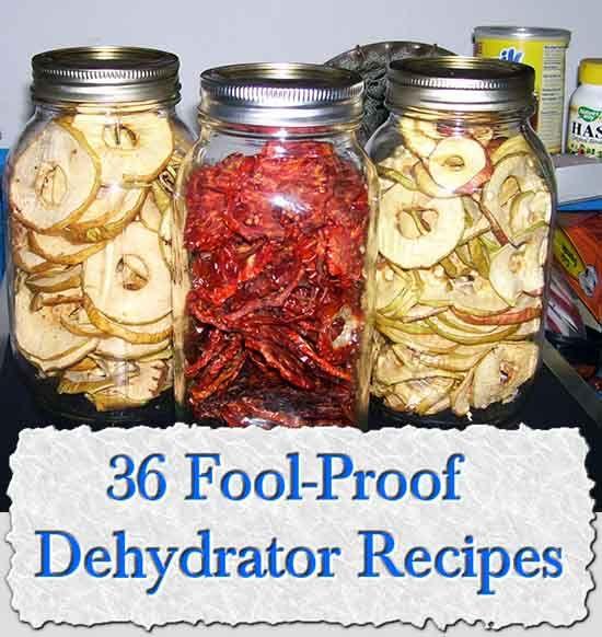36 Fool-Proof Dehydrator Recipes