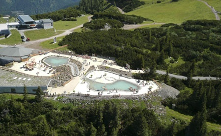 Triassicpark Steinplatte