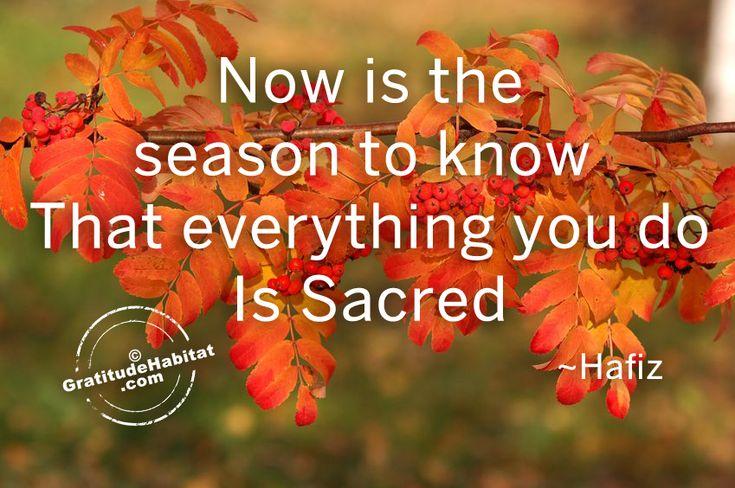 Awesome Autumn | Gift Gratitude at Gratitude Habitat