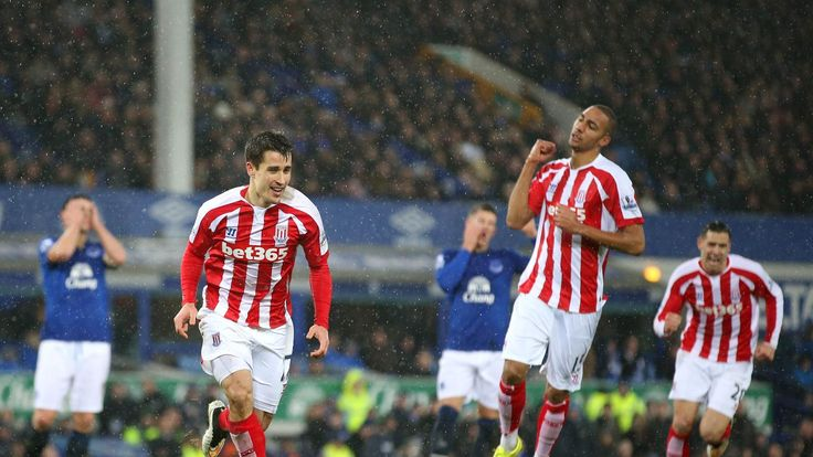 Everton FC vs Stoke City FC 26 December 2014 Match Stoke City FC Team Information