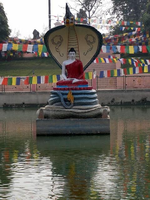 Mucalinda Lake (The Above Of Snake King): Bodh Gaya (Bihar)