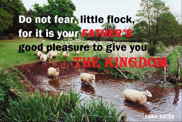 """""""Do not fear, little flock, for it is your Father's good pleasure to give you the kingdom"""" (Luke 12:32).  Inspirational Bible Verses - Life, Hope & Truth"""
