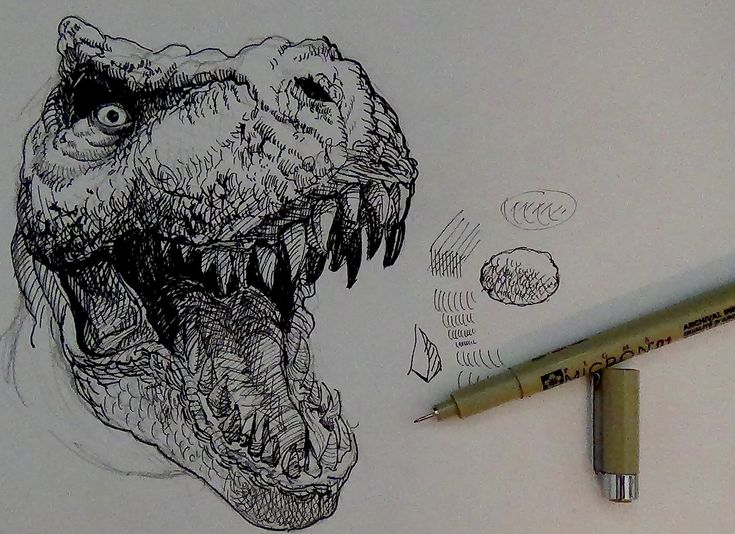 Tips on drawing a tyrannosaurus rex or T-rex in pen and ink