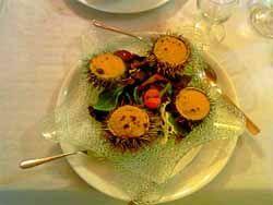 Икра морского ежа – один из самых полезных продуктов для нашего здоровья | Блог Ирины Зайцевой