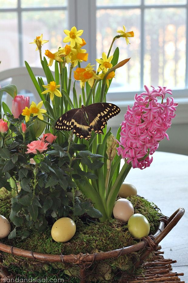 Spring Tabletop Garden - Page 6 of 8 - Sand and Sisal