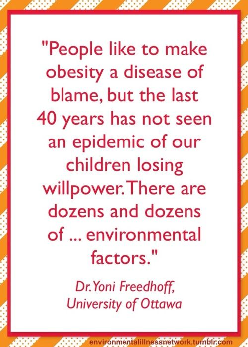 obesity environmental factors essay Given that there are no recognizable changes within individuals, sources outside  of individuals need to be considered as causal factors for obesity by definition.