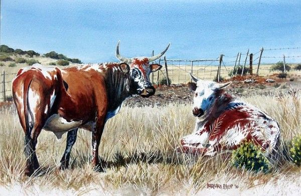 Google Image Result for http://www.silvermere.africanpainting.com/wp-content/uploads/2010/09/Nguni-pair-600x390.jpg