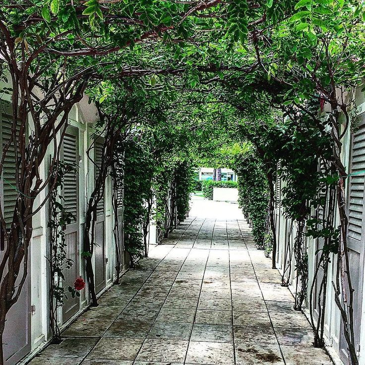 ZONA BEACH 86/87 RICCIONE#art#artisti#architect#arredamento#blu#bambini#club#design#foto#fiori#fotografia#GIO#interiordesign#luna#mare#musica#ne#party#photo#primavera#restauro#sole#vintage#vinyl#circolinodelmolo#birra#landroverdefender#kfo#kalamarofrittoriccione# by giovannicenni ZONA BEACH 86/87…