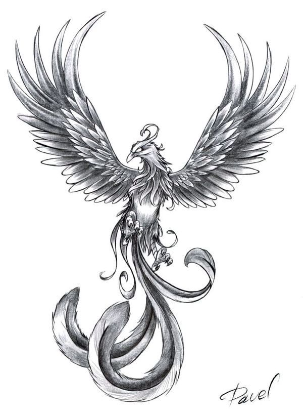 love the details on the wings and the talons. I would make the face a little more feminim and change the tail