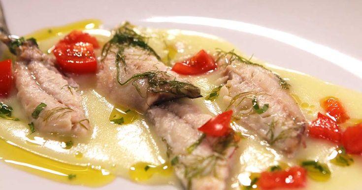 Lo chef Fabio Campoli ci prepara uno sgombro marinato su crema di patate. Un piatto raffinato e leggero, ideale da servire come antipasto