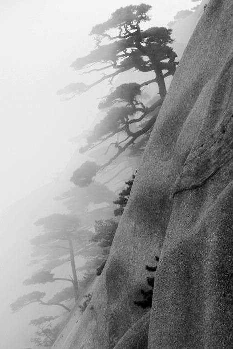 Motoko Matsuda: Black And White Photos China, White Photography, Good Things, Mists, Ben Wainwright, Huangshan, Yellow Mountain, Japan Travel, Huang Shan