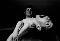 Chernobyl Nuclear Disaster Russian Effects - Bing Images