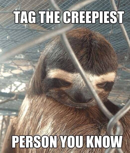 Rape sloth memes - photo#32