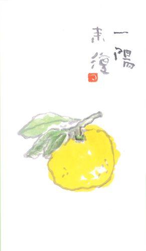 一陽来復 柚子