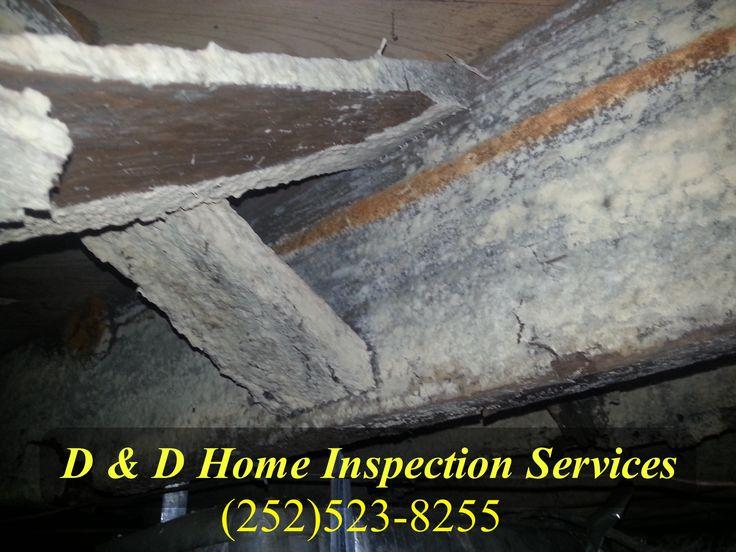 Extensive Moisture damage found during a home inspection in Eastern North Carolina.   Jacksonville, Richlands, Trenton, Maysville, Emerald Isle, New Bern, Greenville, Kinston, Goldsboro, Snow Hill, Farmville
