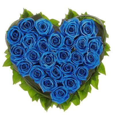 Сердце из 25 синих роз с бесплатной доставкой в Москве http://www.dostavka-tsvetov.com/tsvet/rozi-sladkij-rubin