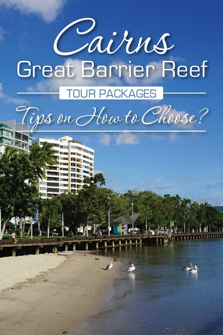 Cairns Great Barrier Reef Tour Packages Tips How to Choose!