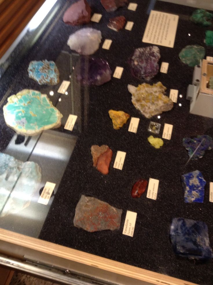 Rocks from the museum of science