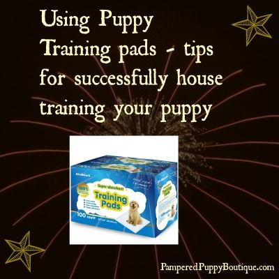 Successfully house train your puppy using puppy training pads - get the details for success and find the best selling pappy pads on the market today. #dogtraining