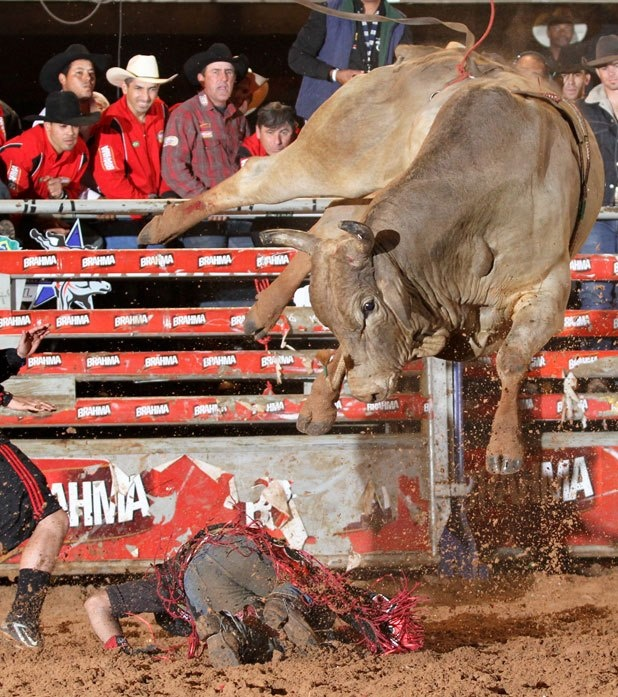 how to become a bull rider