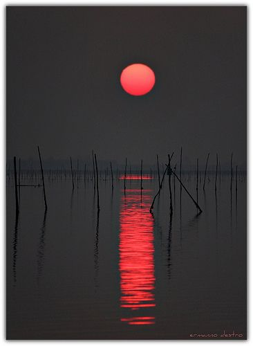GlowLittle Red, Photography Sunsets, Red Moon, Sunsetbeauti Beach, Sunsets Pictures, Beautiful Nature Photography, Red Black, Red Sun, Amazing Sunsets