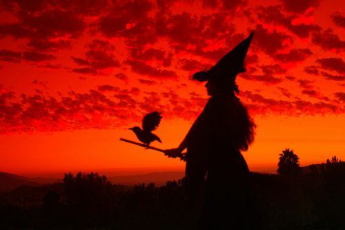 Witch on Sunset sunset witch halloween halloween pictures happy halloween halloween ideas harrow movie