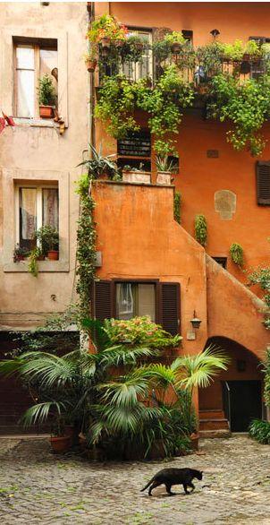 Roms Hinterhöfe. Und was man sonst noch in Rom sehen sollte: http://www.travelbook.de/europa/Abseits-der-Touristenpfade-Rom-fuer-Fortgeschrittene-8-Tipps-279809.html