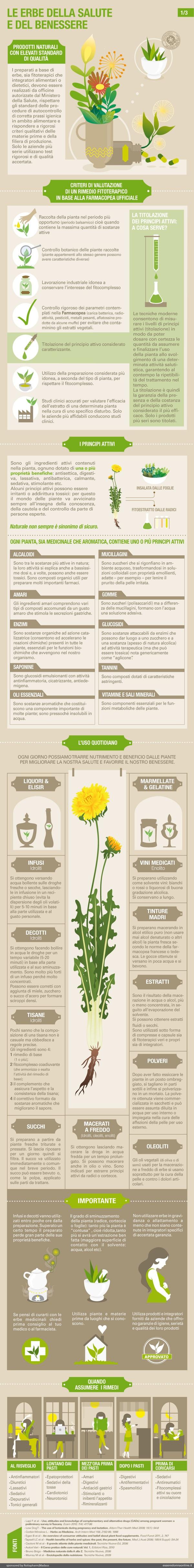 INFOGRAPHIC Le erbe della salute on Behance