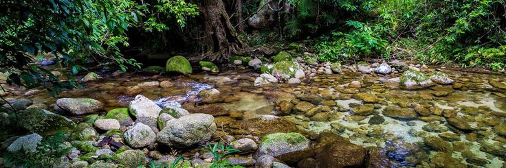 Highlights of this road trip include Babinda Boulders, Paronella Park, Mission Beach, Hinchinbrook Island, and free camping! - #campervan #australia #travel - Townsville to Cairns | Cairns to Townsville Drive