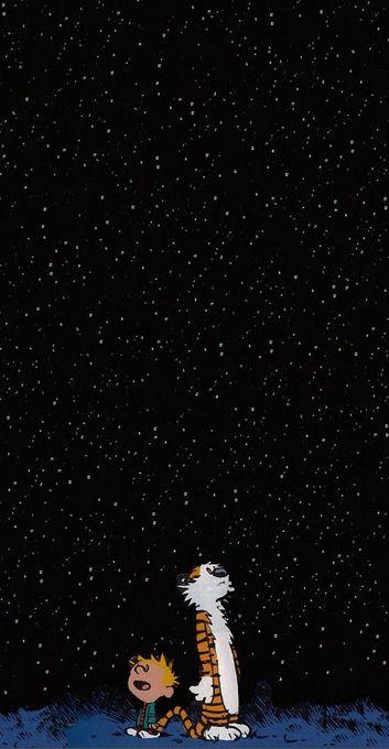 calvin and hobbes - starry night