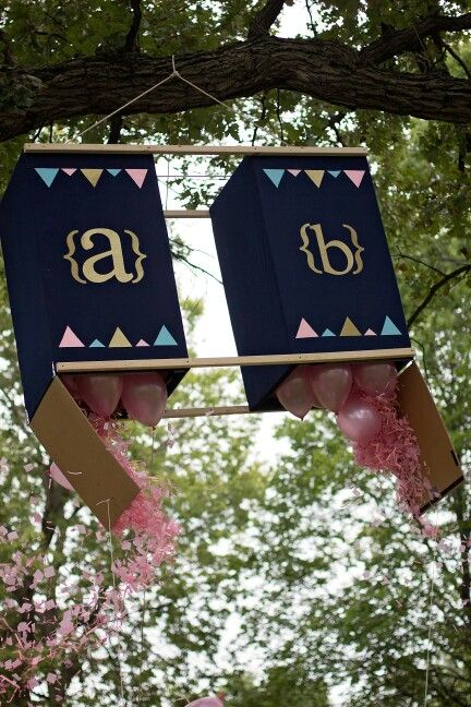 Best 25 Gender reveal twins ideas – Ideas for Announcing Baby Gender