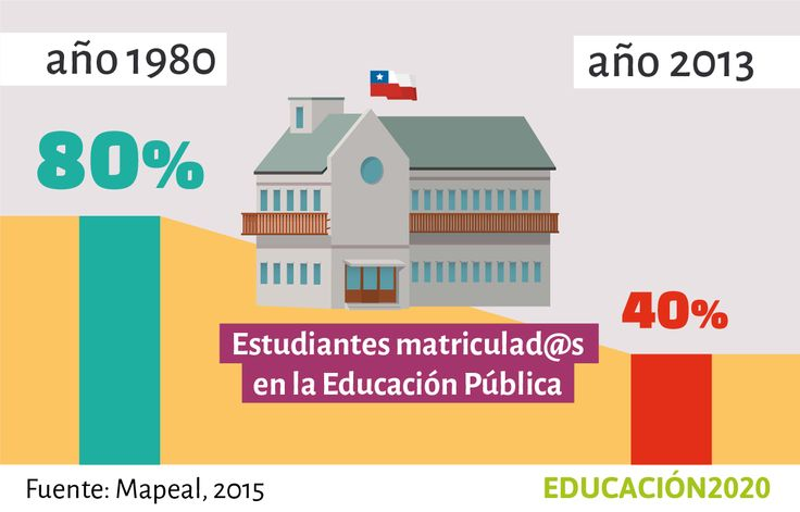 Chile es el país de América Latina con la matrícula pública más baja. Éste es el de efecto décadas de políticas públicas que incentivaron la privatización de la educación en el país.