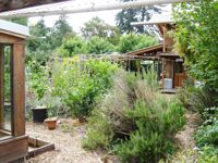Suburban Permaculture - This website contains useful and practical information about transforming residential properties and neighborhoods towards a culture and economy closer to home, safer, more secure and uplifting.