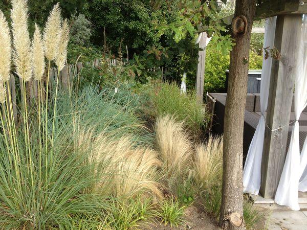 Dünenlandschaft Im Garten Anlegen 77 besten garten dünengarten gräsergarten strandgarten küstengarten