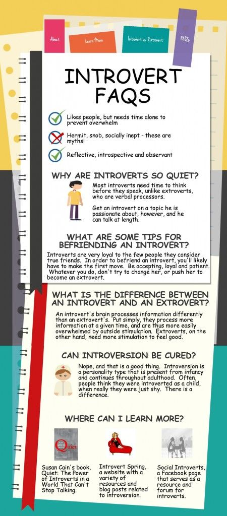 Introvert FAQs Infographic   Introvert Spring
