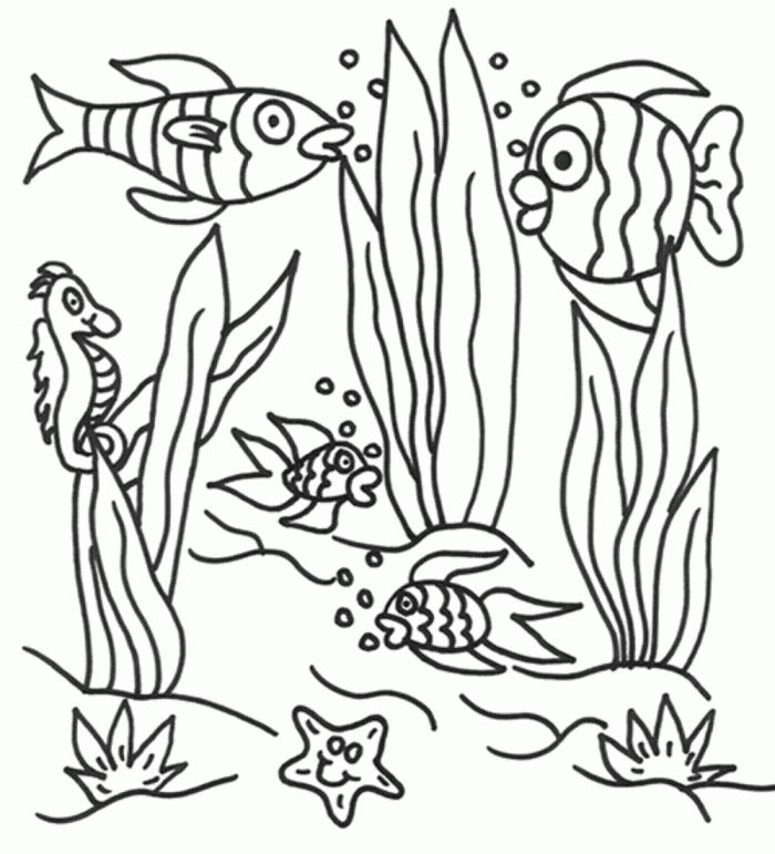 Amazing Ocean Plants Coloring Pages 19 l under the sea